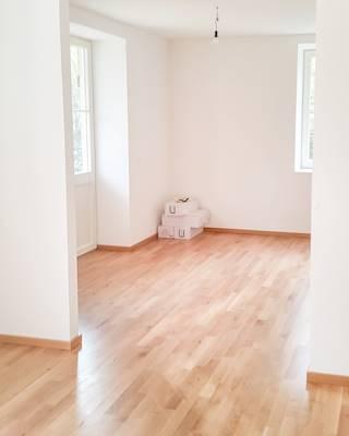 Wohnzimmer und offene Wohnkueche